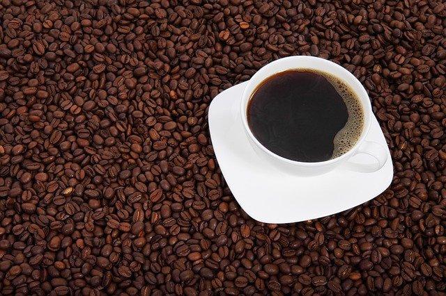 コピ・ルアクとは?【インドネシア原産の世界最高級のコーヒーです】