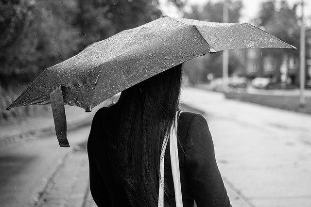 1 : 折りたたみ傘