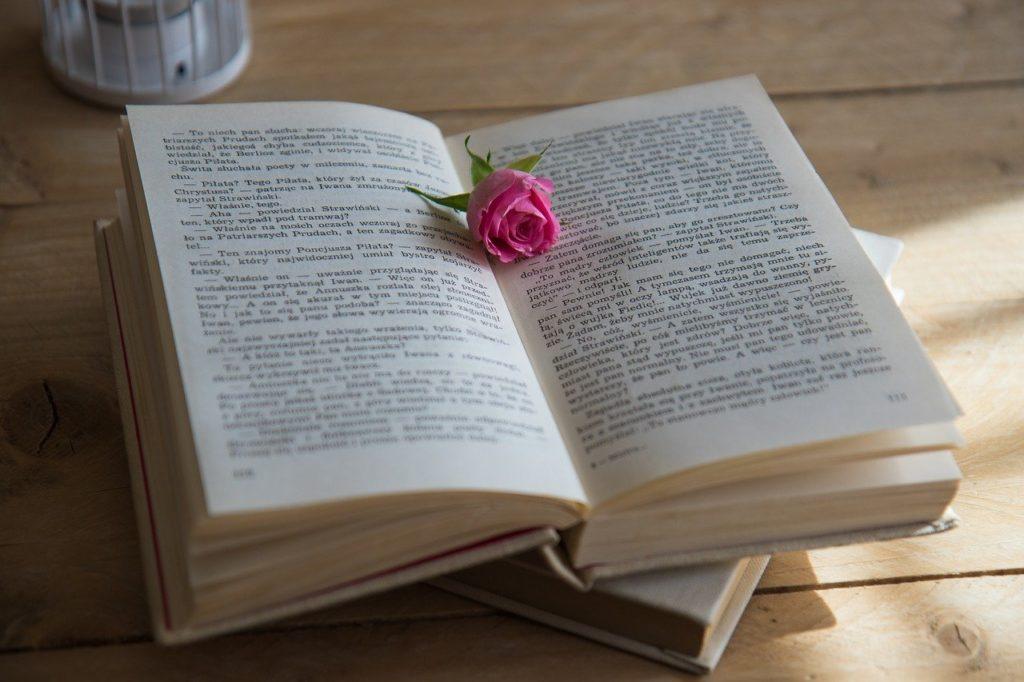 英語学習におすすめのラダーシリーズをご紹介!【厳選おすすめ10選】