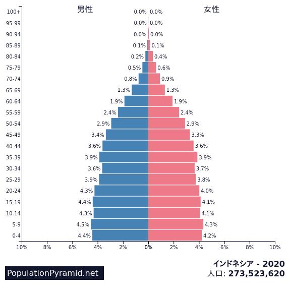 インドネシアの人口ピラミッド